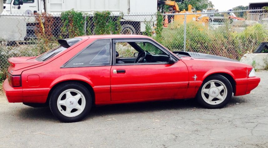 Main photo of Ani Mal's 1989 Ford Mustang