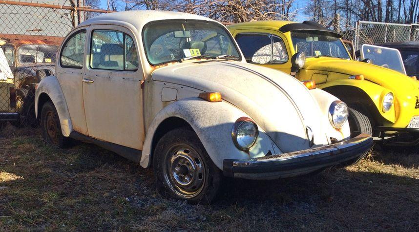 Main photo of Sara Wheeler's 1974 Volkswagen Beetle (Pre-1980)
