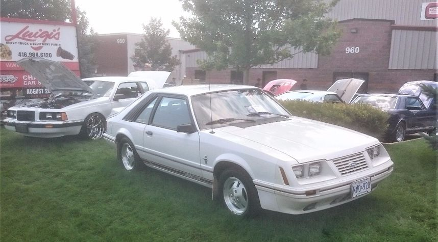 Main photo of Christopher Beacock's 1984 Ford Mustang