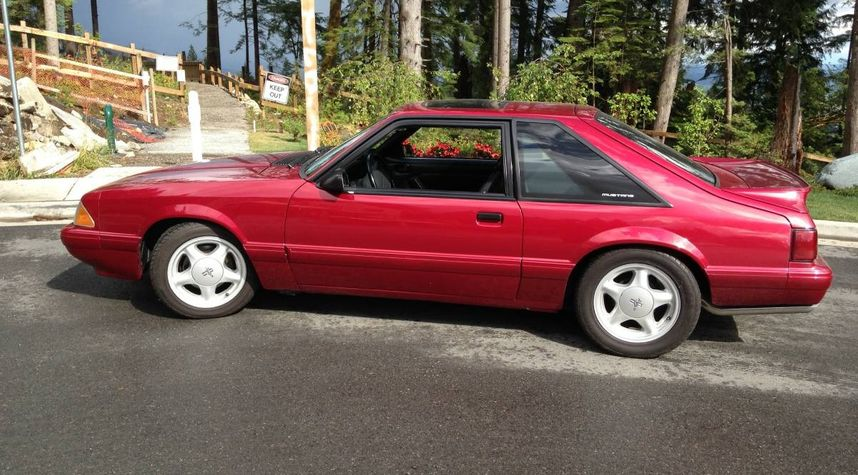 Main photo of Daniel McCarthy's 1993 Ford Mustang