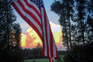 homepage tile photo for It really sickens me to see people burning the American flag...