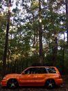 Thumbnail of Jace Lashley's 2005 Subaru Forester