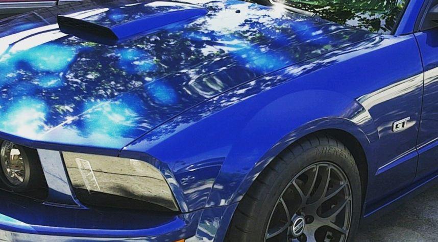 Main photo of Joseph Clemson's 2008 Ford Mustang