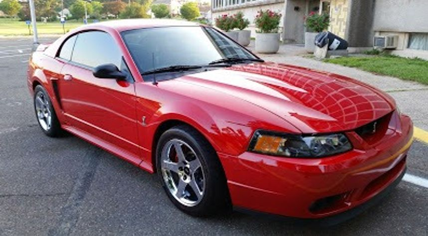 Main photo of Marco Correia's 1999 Ford Mustang SVT Cobra