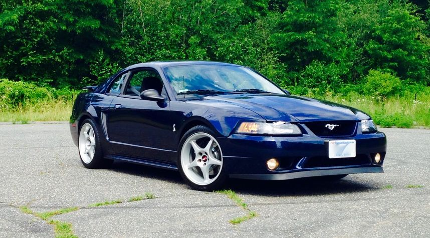 Main photo of Mark Turowsky's 2001 Ford Mustang SVT Cobra