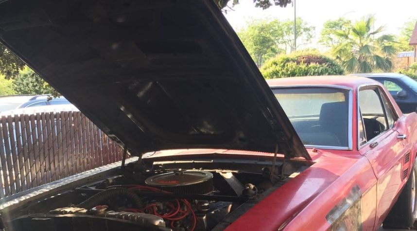 Main photo of Andres Garcia's 1967 Ford Mustang