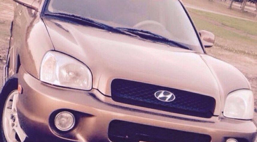 Main photo of Raymund Giles's 2002 Hyundai Santa Fe