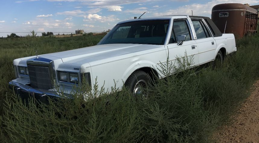 Main photo of Liz Hood's 1988 Lincoln Town Car