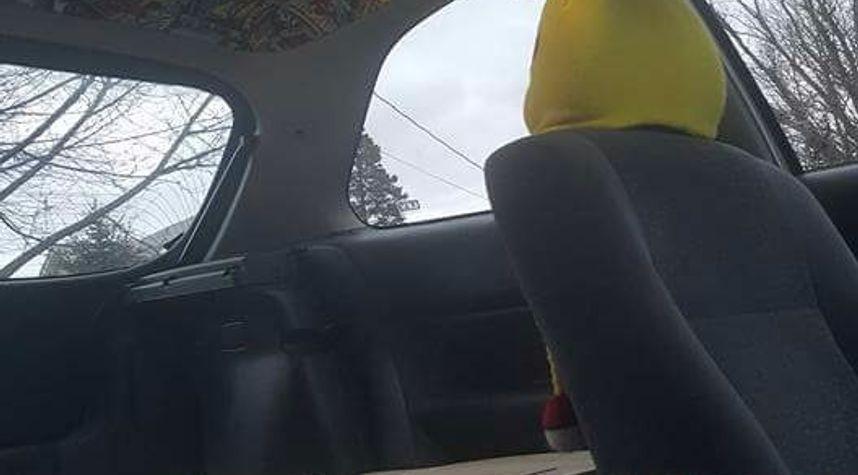 Main photo of Daryl Hodson's 2000 Honda Civic