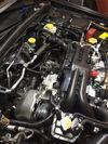Thumbnail of Chris Coulson's 2014 Subaru Impreza WRX