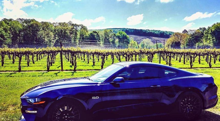 Main photo of Richard Wensel's 2018 Ford Mustang