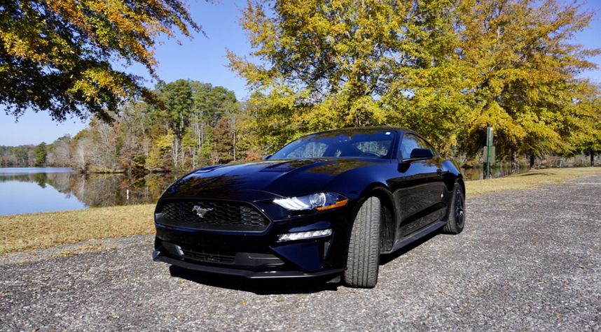 Main photo of Carson Shaw's 2019 Ford Mustang