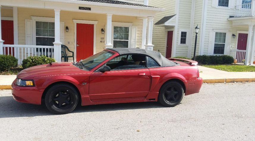 Main photo of Tristan Stamets's 1999 Ford Mustang SVT Cobra