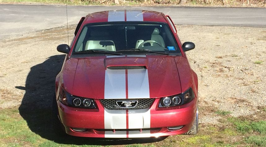 Main photo of Nathan  Robichaud's 2003 Ford Mustang